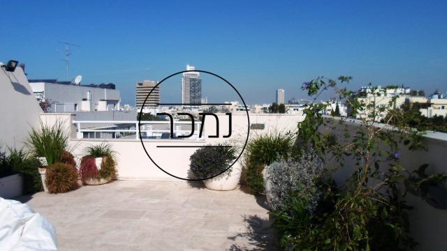 תיווך תל אביב